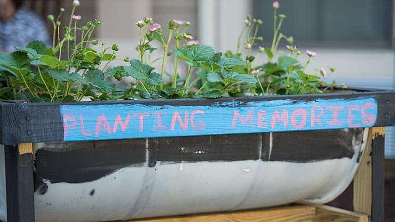 Flowers in planter box with Planting Memories written on the side